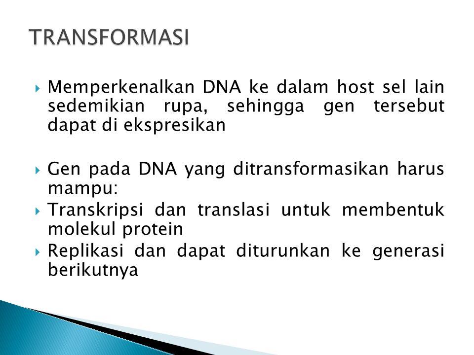 TRANSFORMASI Memperkenalkan DNA ke dalam host sel lain sedemikian rupa, sehingga gen tersebut dapat di ekspresikan.