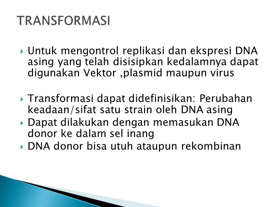 TRANSFORMASI Untuk mengontrol replikasi dan ekspresi DNA asing yang telah disisipkan kedalamnya dapat digunakan Vektor ,plasmid maupun virus.