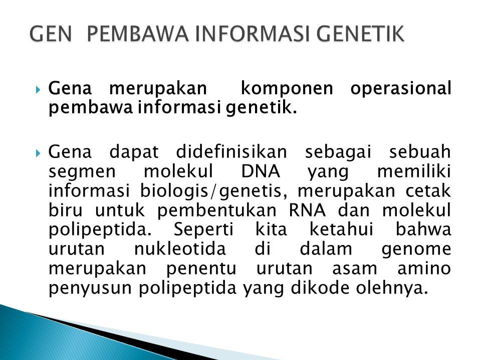 GEN PEMBAWA INFORMASI GENETIK
