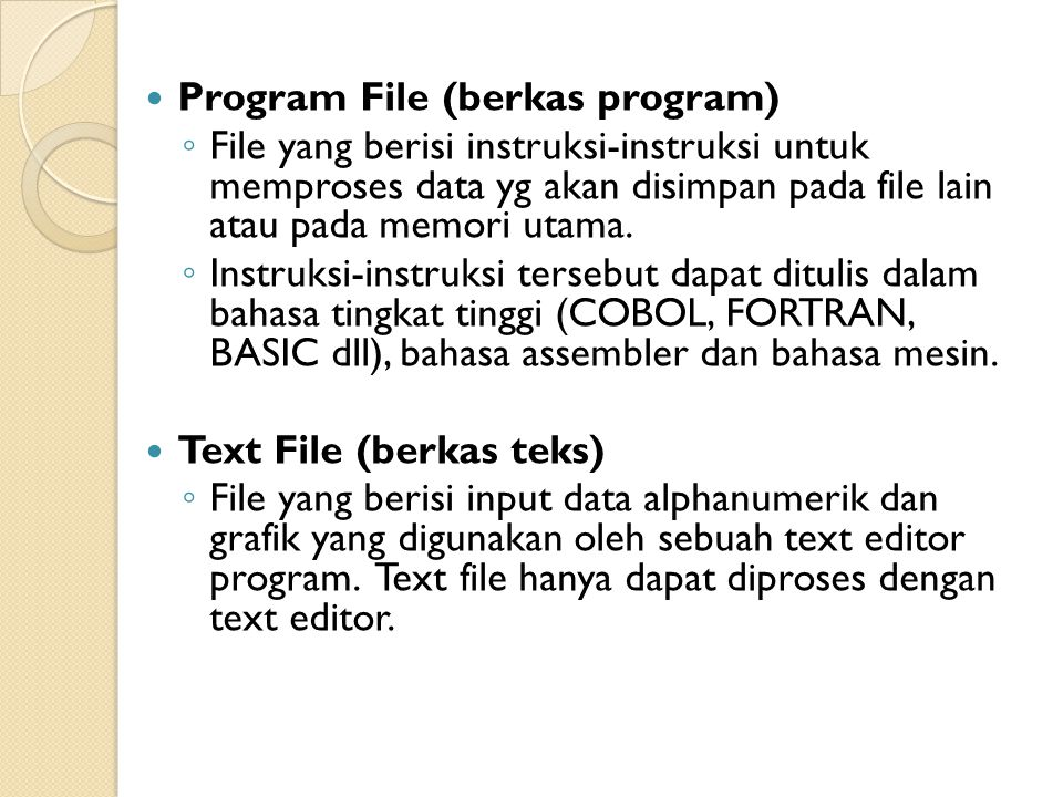 Program File (berkas program)