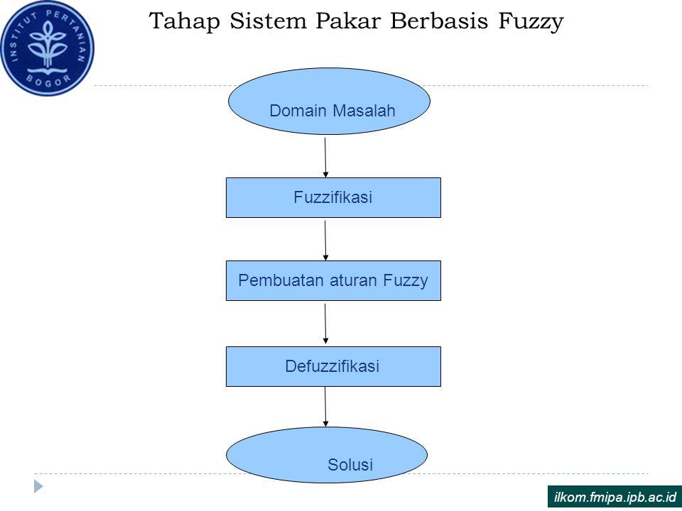 Tahap Sistem Pakar Berbasis Fuzzy