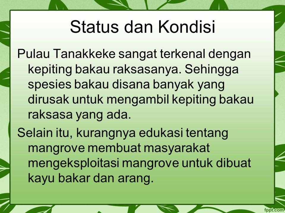 Status dan Kondisi
