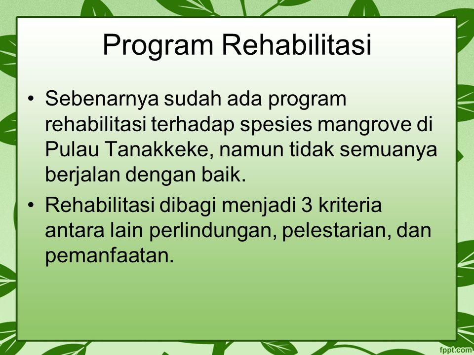 Program Rehabilitasi