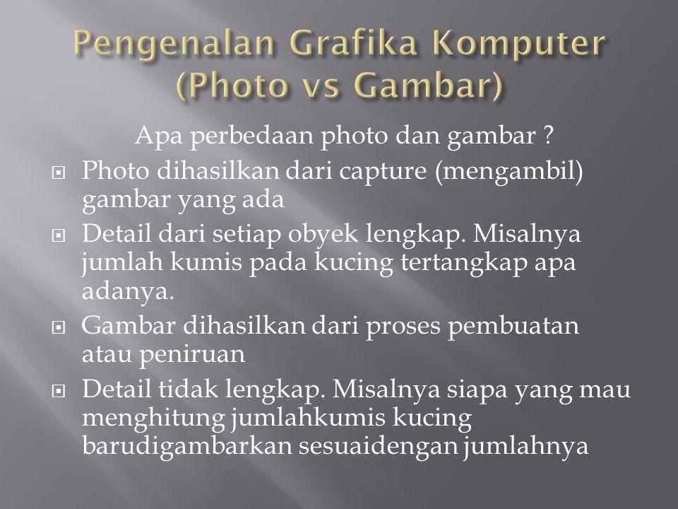 Pengenalan Grafika Komputer (Photo vs Gambar)