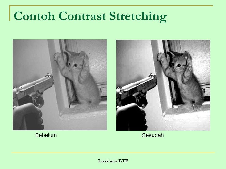 Contoh Contrast Stretching