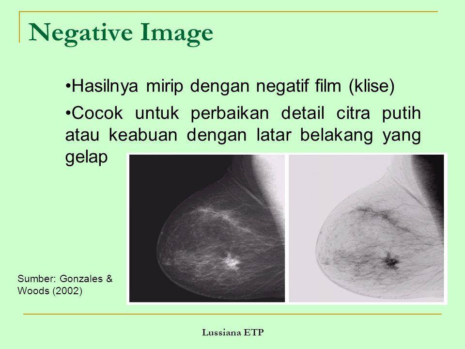 Negative Image Hasilnya mirip dengan negatif film (klise)