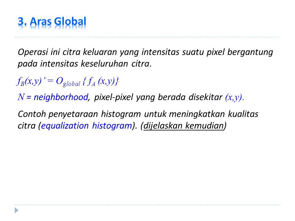 3. Aras Global