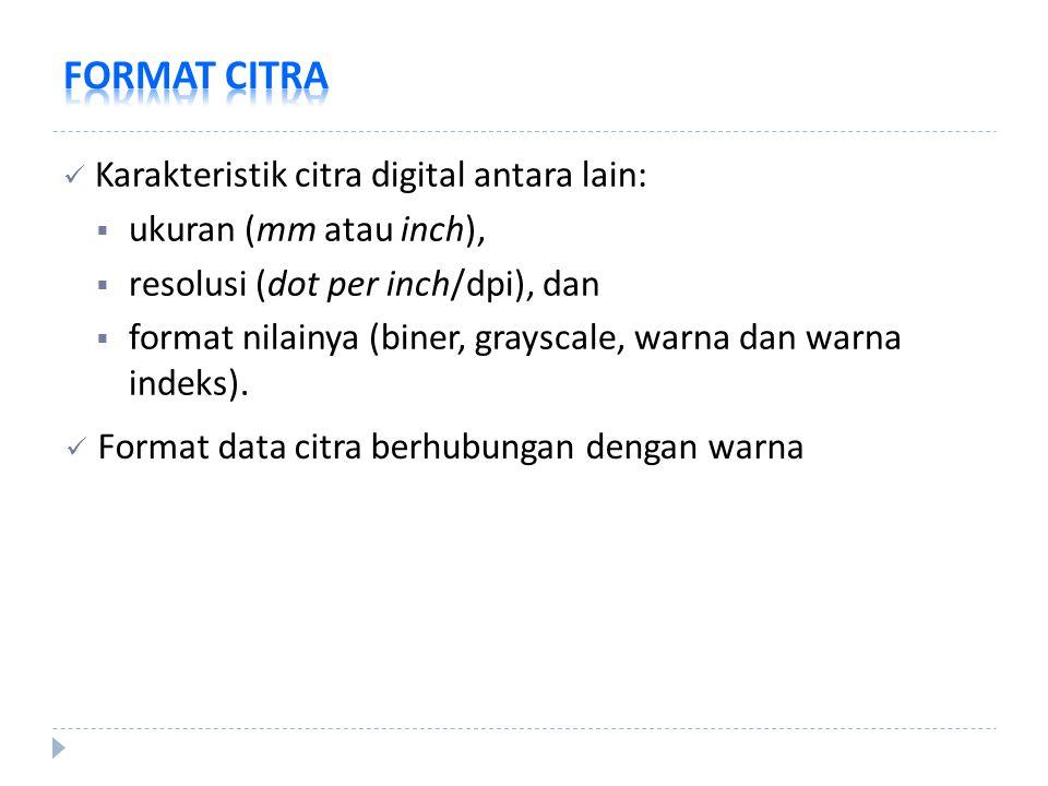 FORMAT CITRA Karakteristik citra digital antara lain: