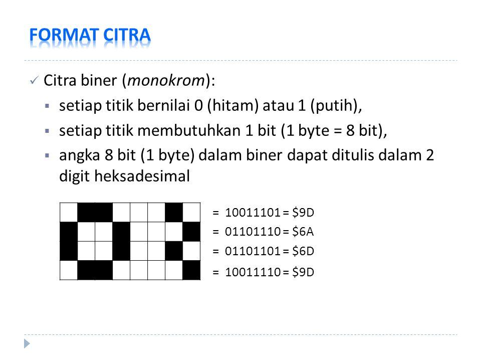 FORMAT CITRA Citra biner (monokrom):