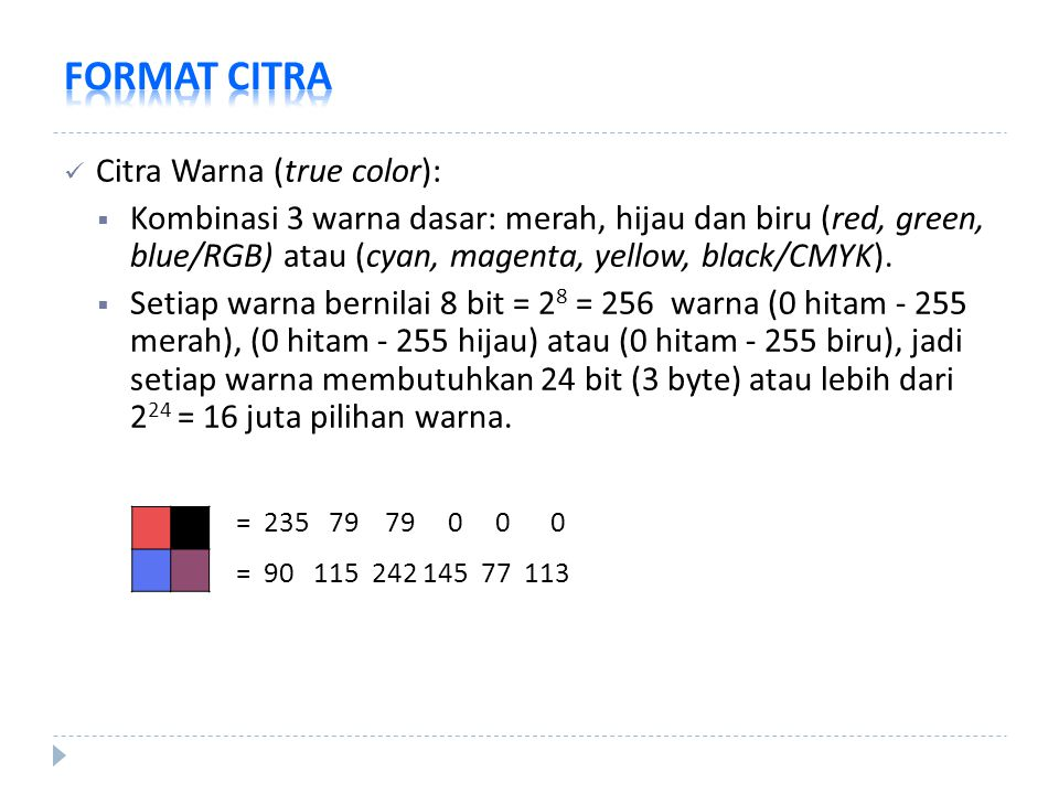 FORMAT CITRA Citra Warna (true color):