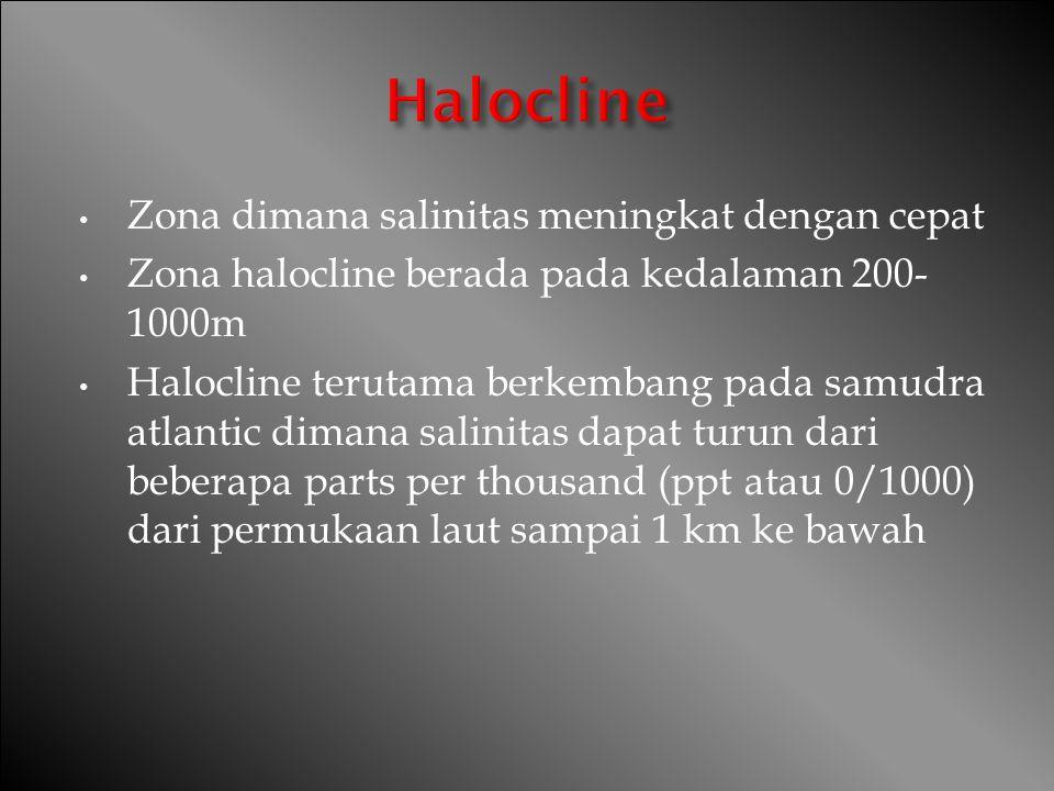 Halocline Zona dimana salinitas meningkat dengan cepat
