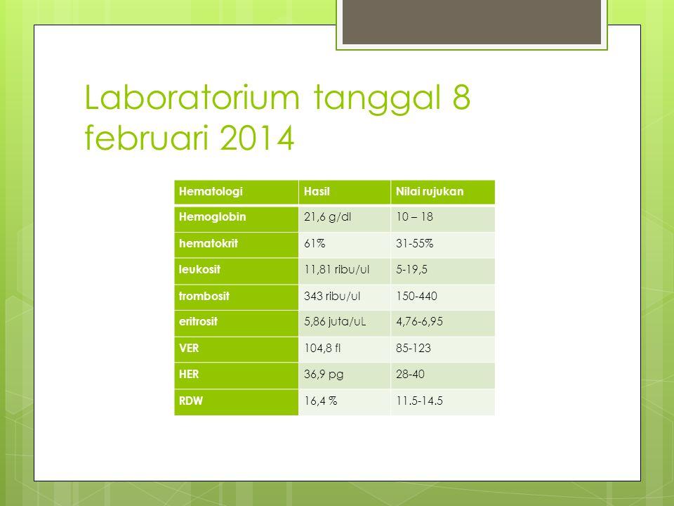 Laboratorium tanggal 8 februari 2014