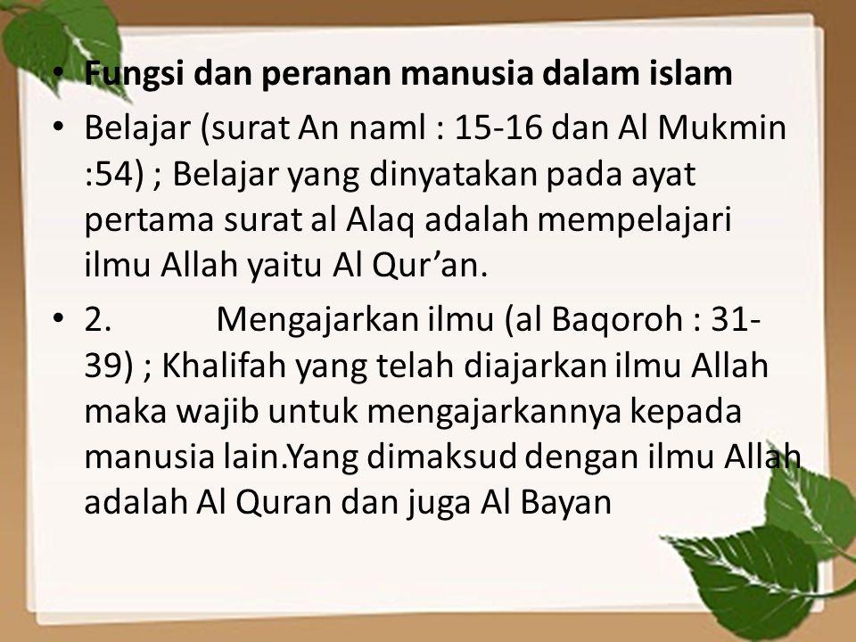 Fungsi dan peranan manusia dalam islam
