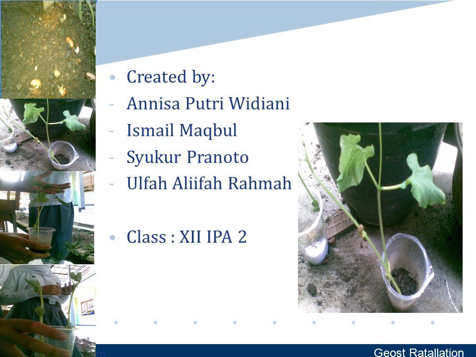 Created by: Annisa Putri Widiani Ismail Maqbul Syukur Pranoto