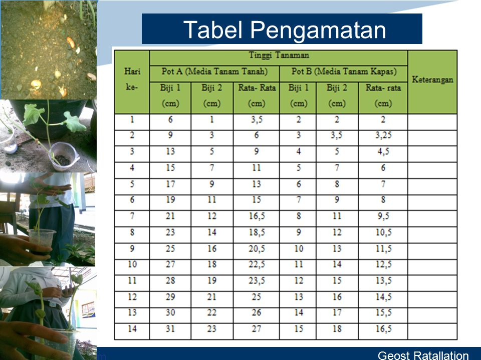 Tabel Pengamatan Geost Ratallation