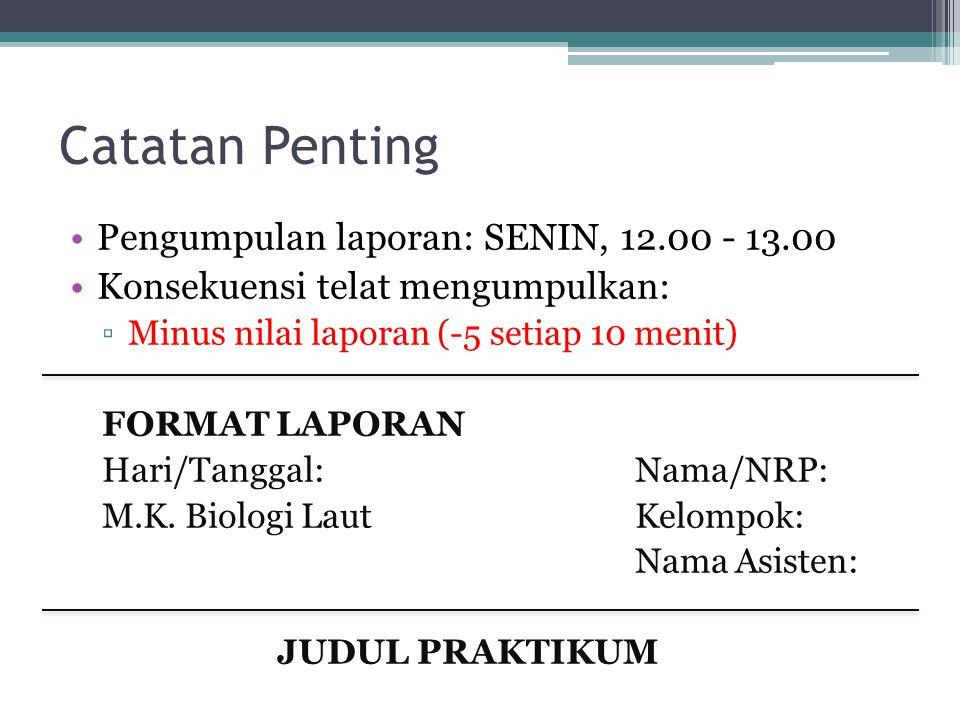 Catatan Penting Pengumpulan laporan: SENIN, 12.00 - 13.00