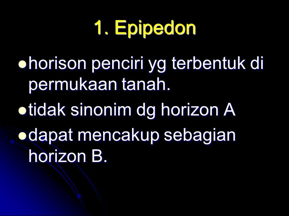 1. Epipedon horison penciri yg terbentuk di permukaan tanah.