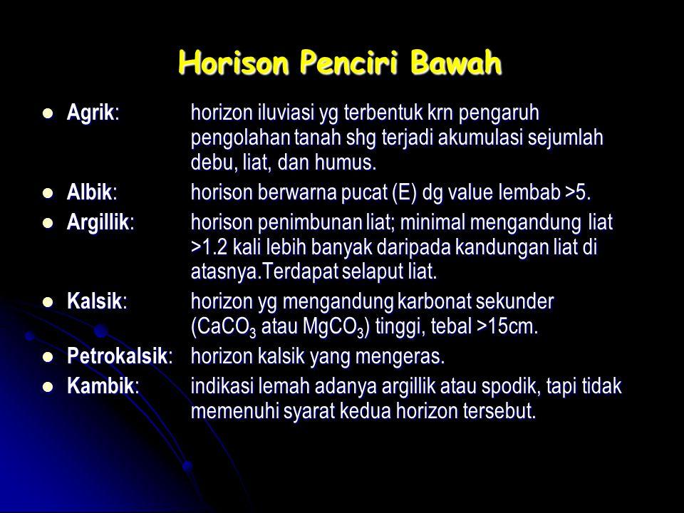 Horison Penciri Bawah Agrik: horizon iluviasi yg terbentuk krn pengaruh pengolahan tanah shg terjadi akumulasi sejumlah debu, liat, dan humus.