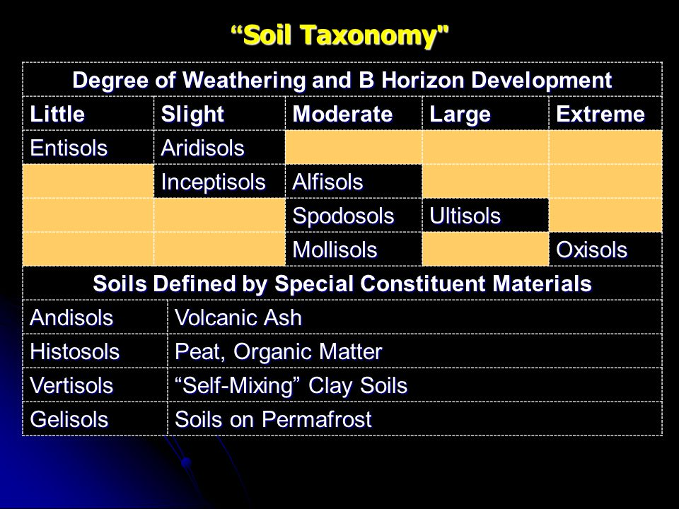 Soil Taxonomy Degree of Weathering and B Horizon Development Little