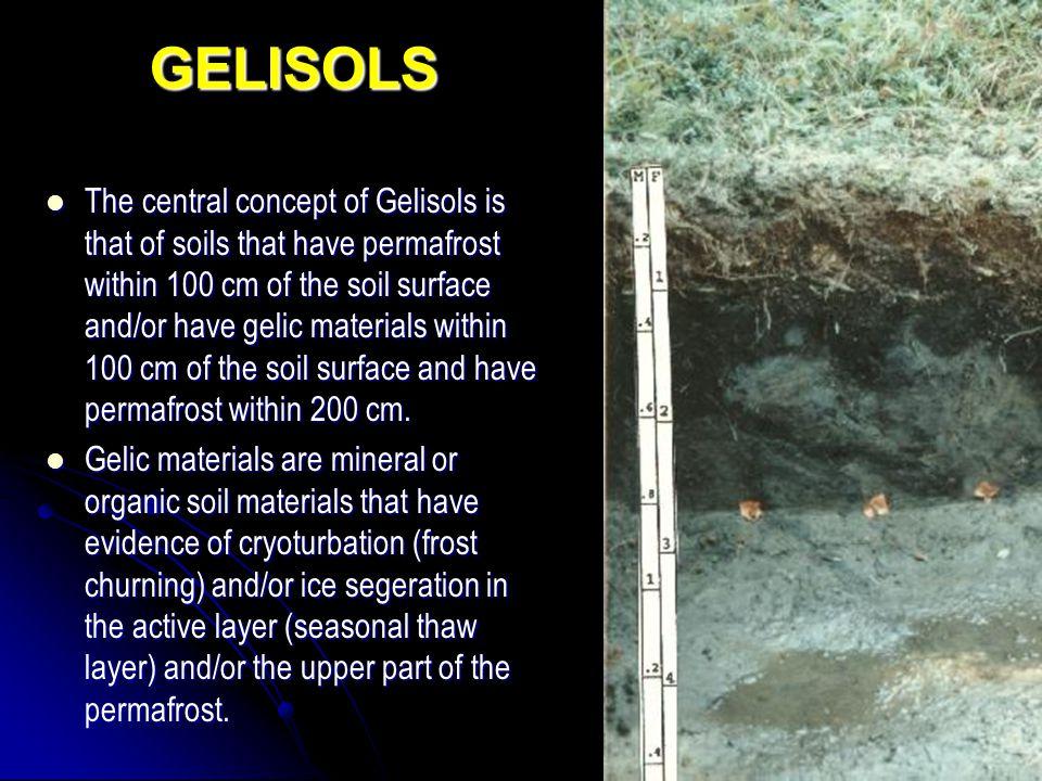 GELISOLS