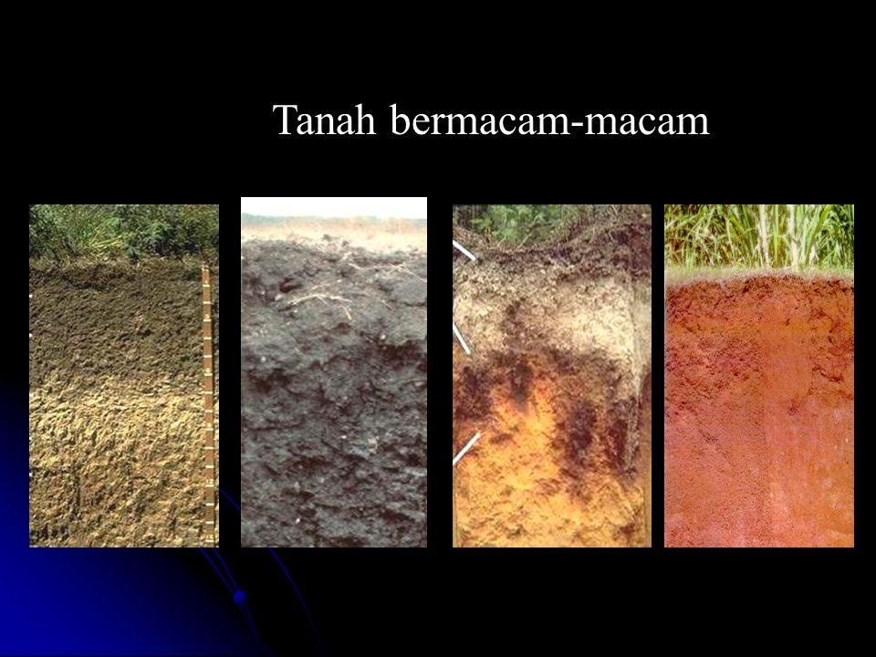 Tanah bermacam-macam