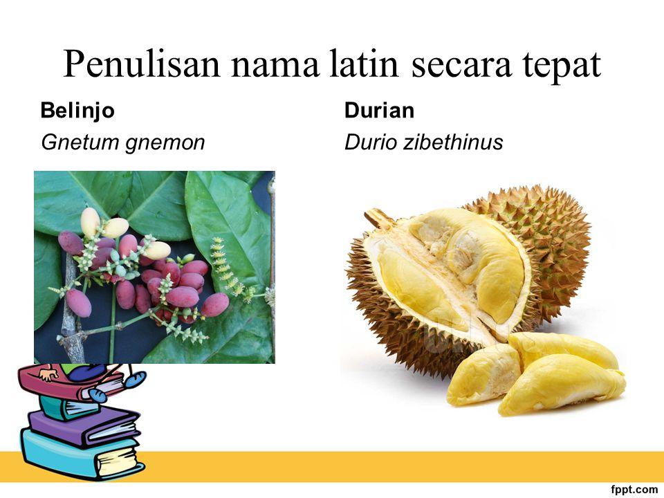 Penulisan nama latin secara tepat