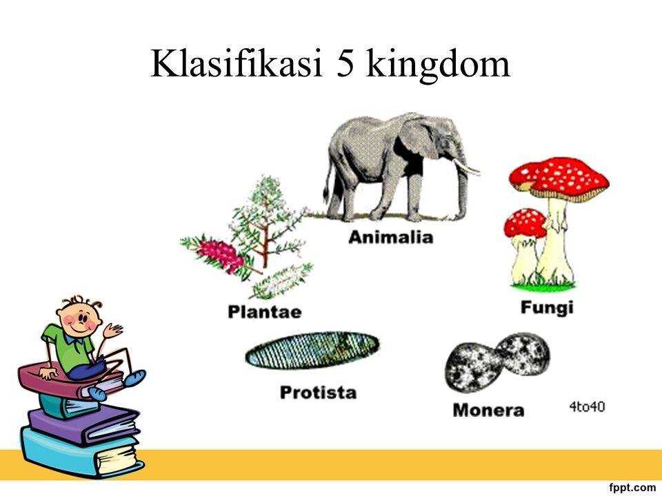Klasifikasi 5 kingdom