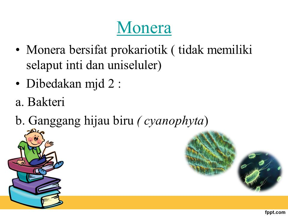 Monera Monera bersifat prokariotik ( tidak memiliki selaput inti dan uniseluler) Dibedakan mjd 2 :