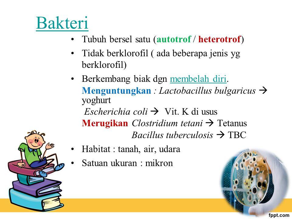 Bakteri Tubuh bersel satu (autotrof / heterotrof)