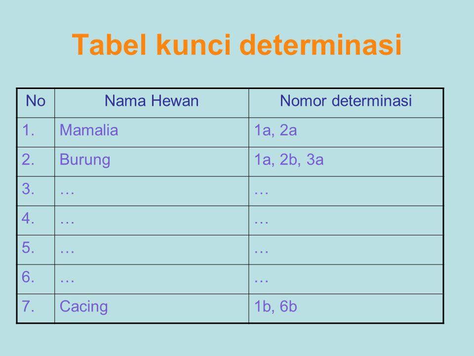 Tabel kunci determinasi
