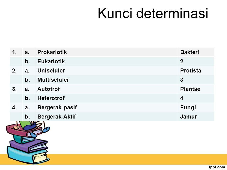 Kunci determinasi 1. a. Prokariotik Bakteri b. Eukariotik 2 2.