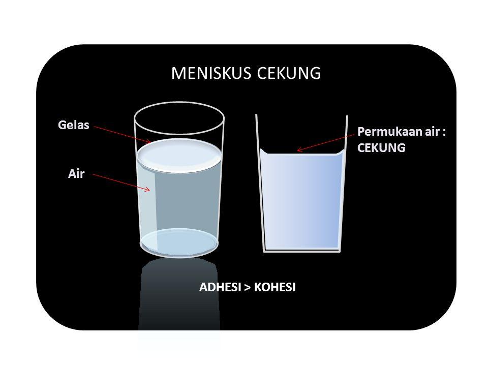 MENISKUS CEKUNG ADHESI > KOHESI Gelas Permukaan air : CEKUNG Air