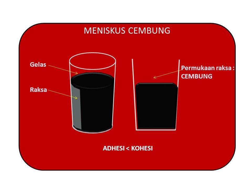 MENISKUS CEMBUNG Gelas Permukaan raksa : CEMBUNG Raksa