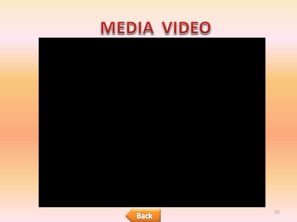 MEDIA VIDEO Back