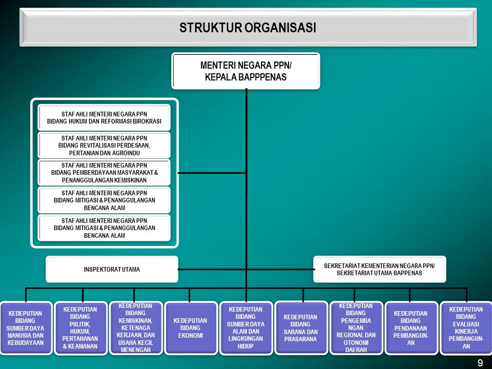 STRUKTUR ORGANISASI MENTERI NEGARA PPN/ KEPALA BAPPPENAS