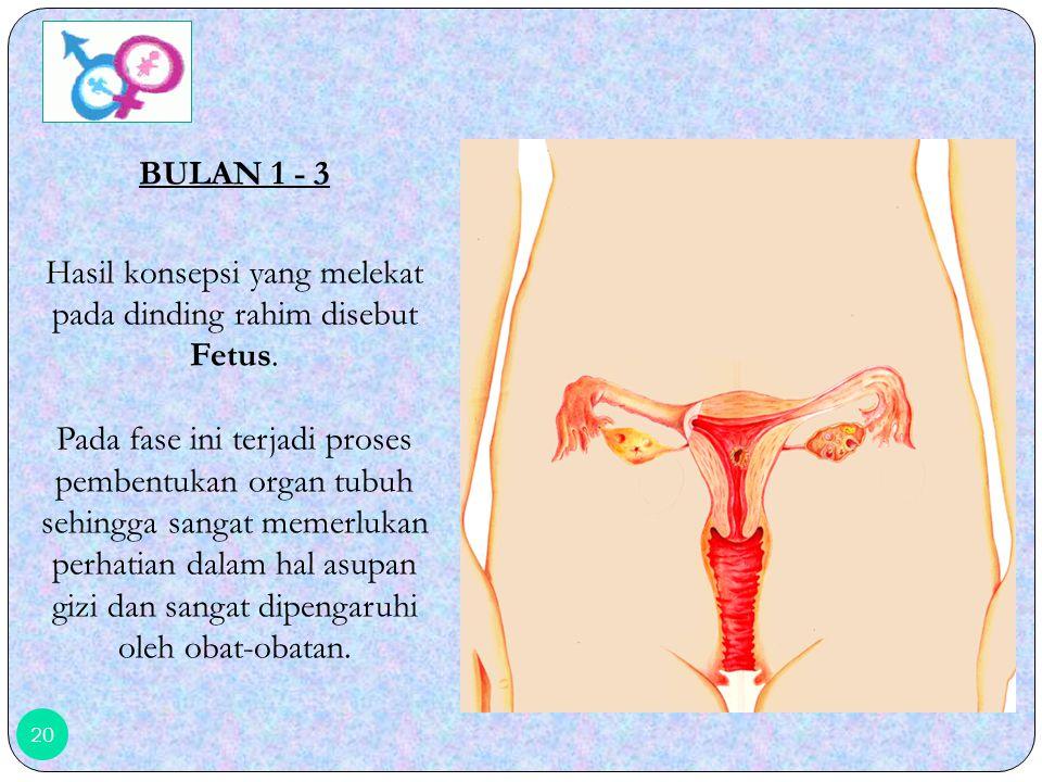 BULAN 1 - 3