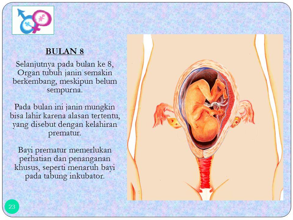 BULAN 8
