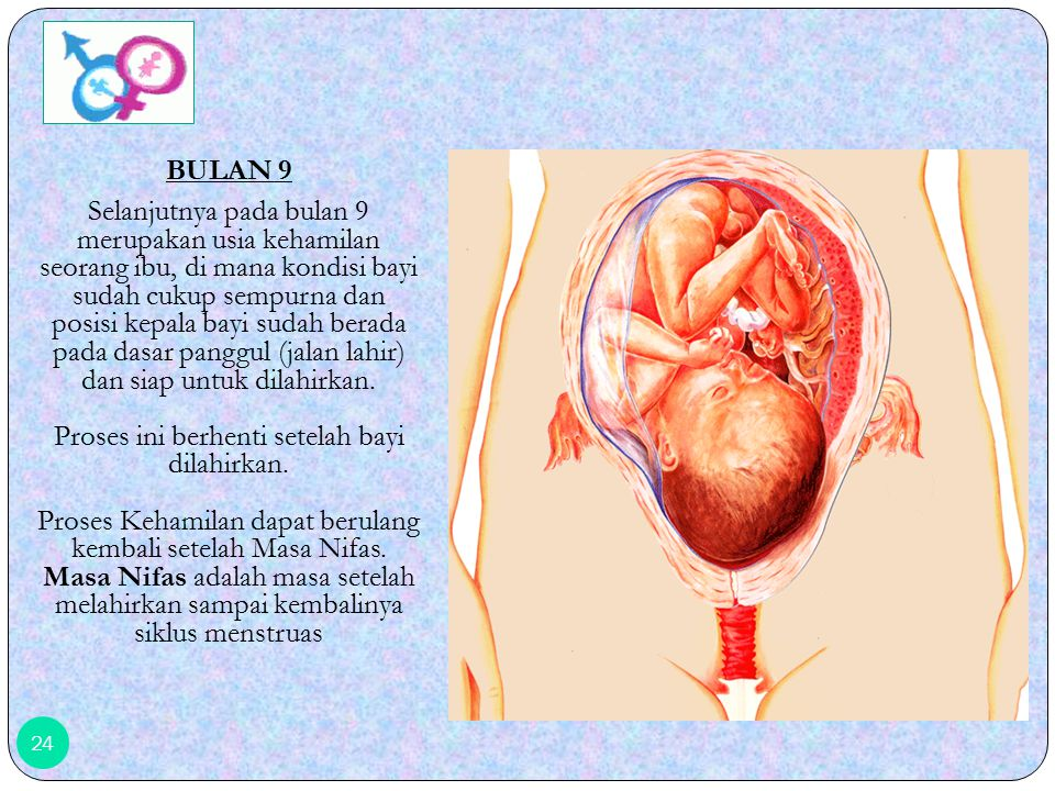 BULAN 9