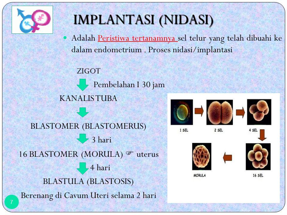 IMPLANTASI (NIDASI) Adalah Peristiwa tertanamnya sel telur yang telah dibuahi ke dalam endometrium . Proses nidasi/implantasi.
