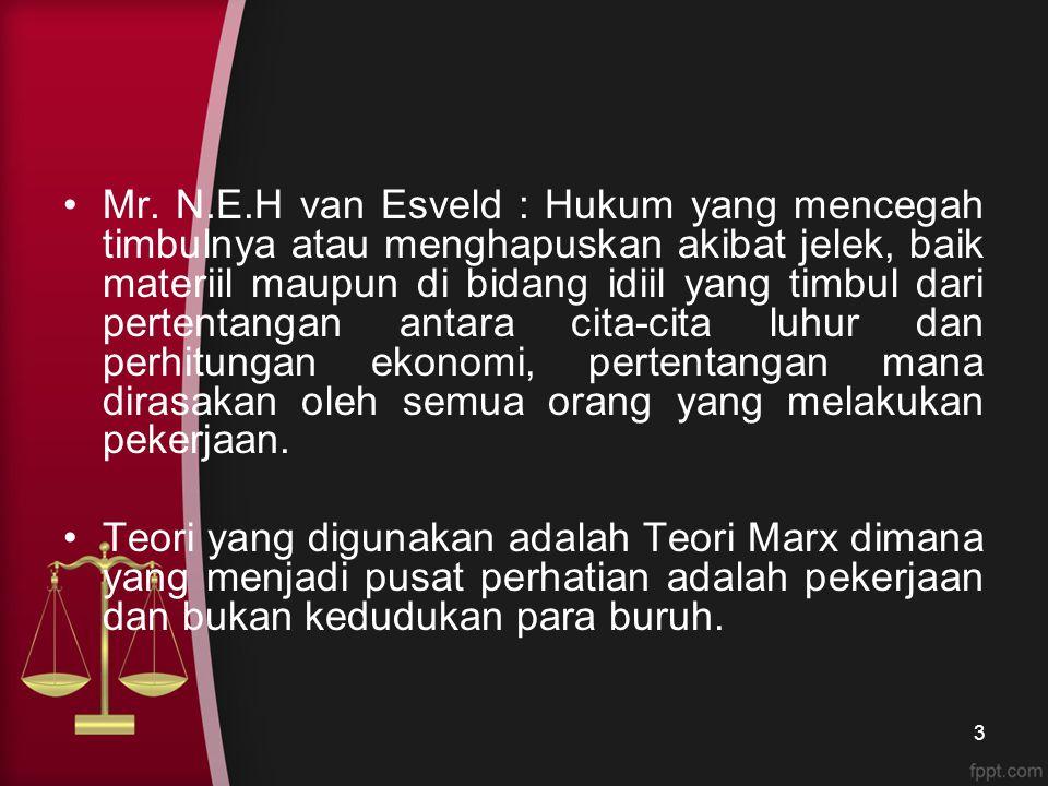 Mr. N.E.H van Esveld : Hukum yang mencegah timbulnya atau menghapuskan akibat jelek, baik materiil maupun di bidang idiil yang timbul dari pertentangan antara cita-cita luhur dan perhitungan ekonomi, pertentangan mana dirasakan oleh semua orang yang melakukan pekerjaan.
