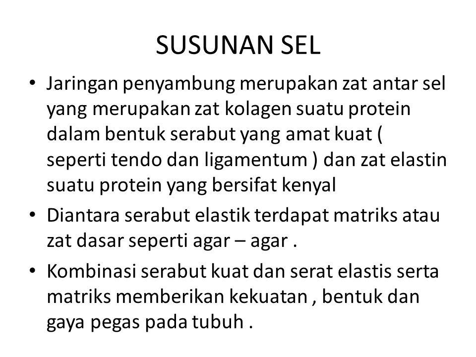 SUSUNAN SEL