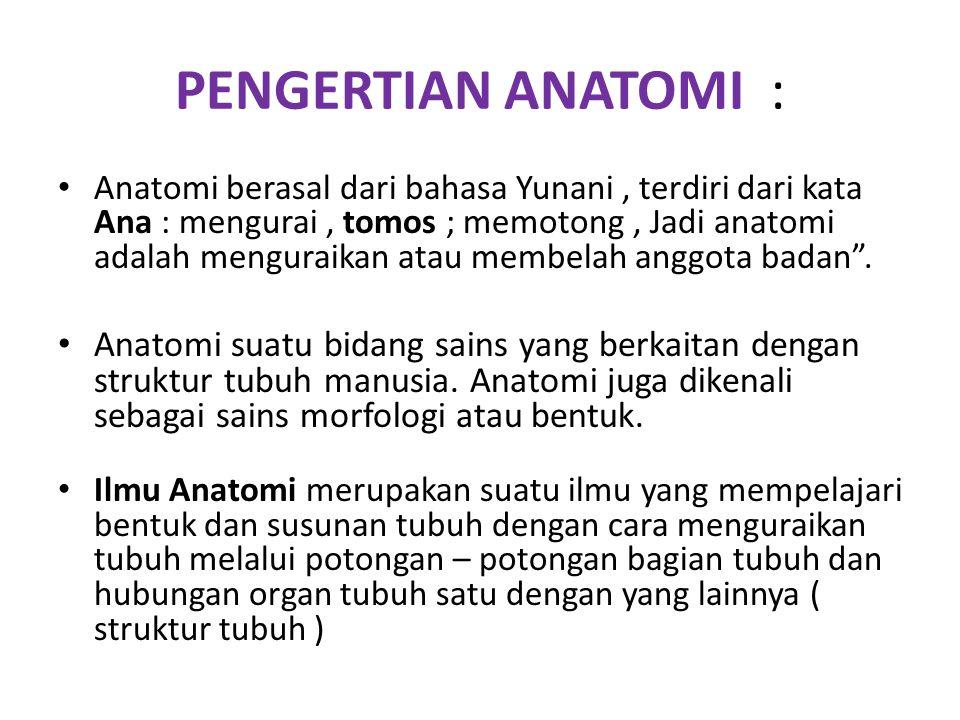 PENGERTIAN ANATOMI :