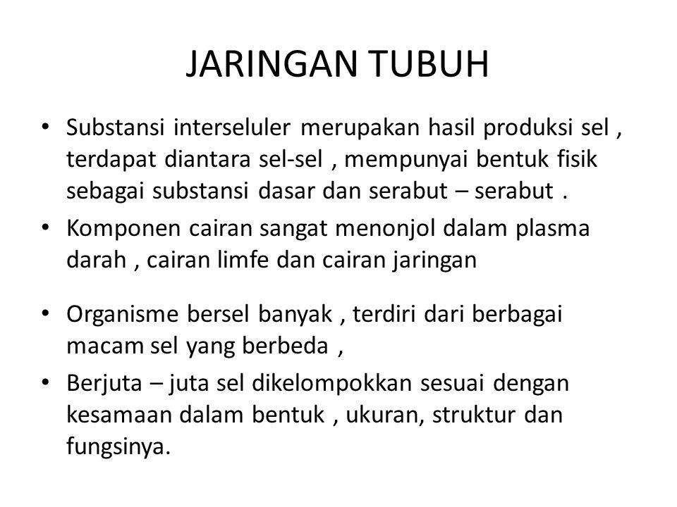 JARINGAN TUBUH