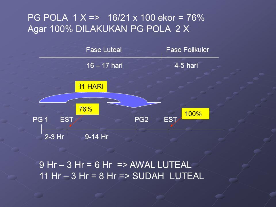 PG POLA 1 X => 16/21 x 100 ekor = 76%