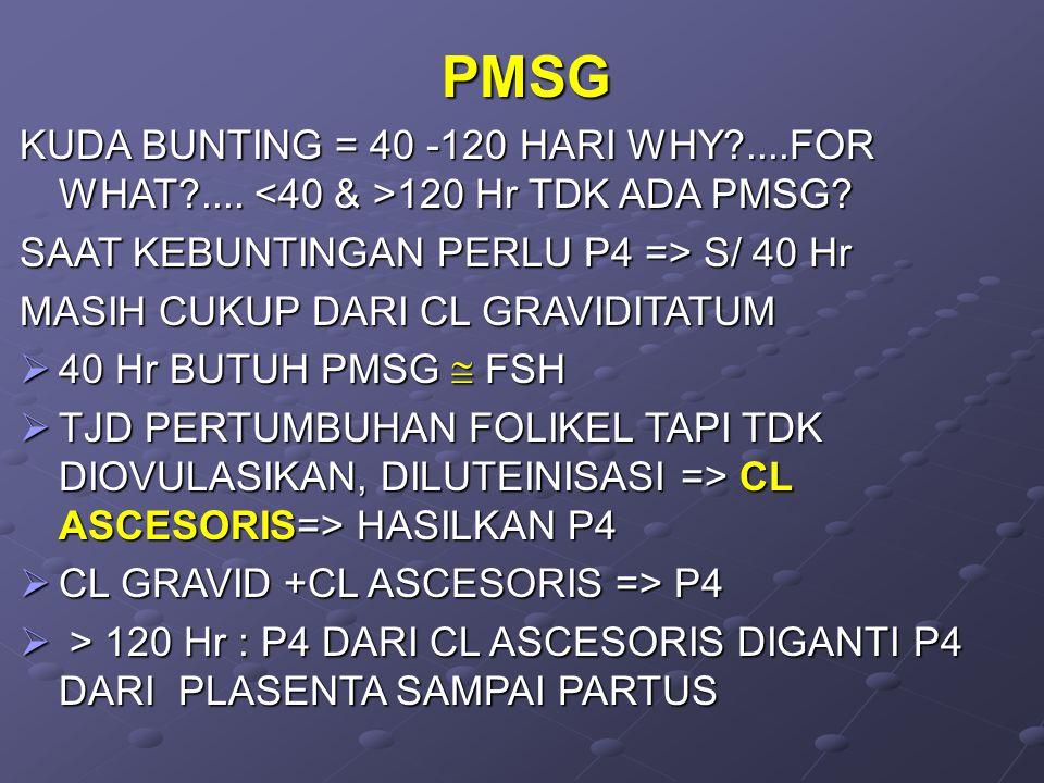 PMSG KUDA BUNTING = 40 -120 HARI WHY ....FOR WHAT .... <40 & >120 Hr TDK ADA PMSG SAAT KEBUNTINGAN PERLU P4 => S/ 40 Hr.