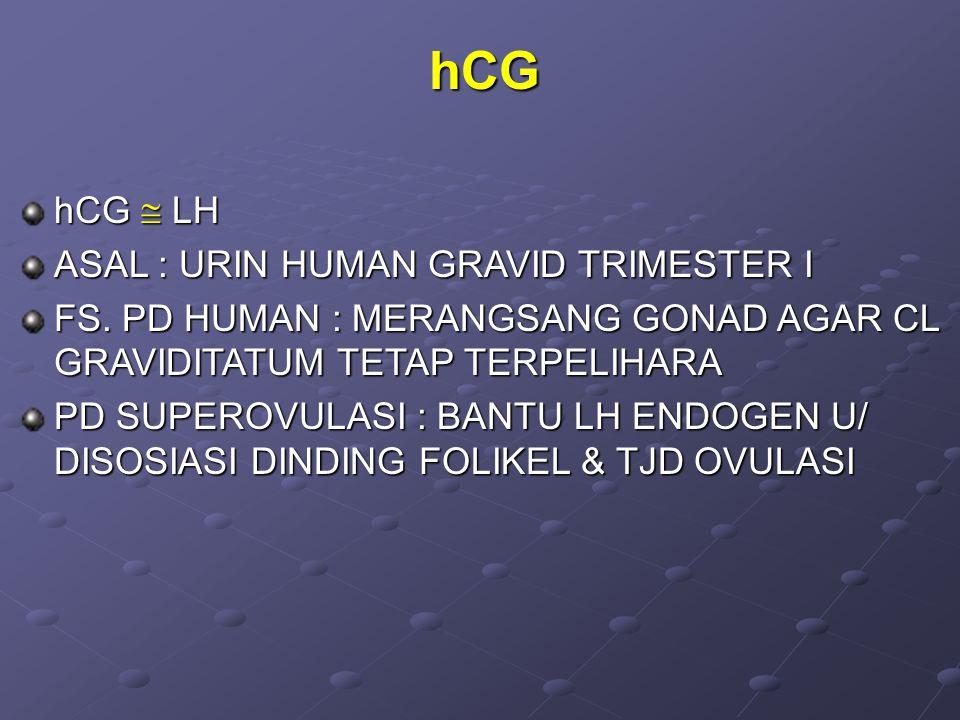 hCG hCG  LH ASAL : URIN HUMAN GRAVID TRIMESTER I