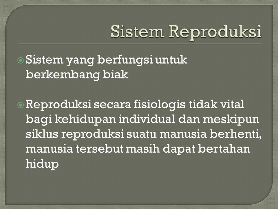 Sistem Reproduksi Sistem yang berfungsi untuk berkembang biak