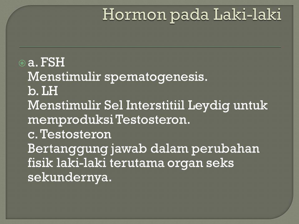 Hormon pada Laki-laki