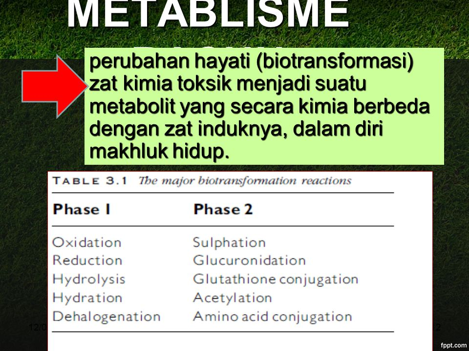 11/04/2017 METABLISME RACUN.
