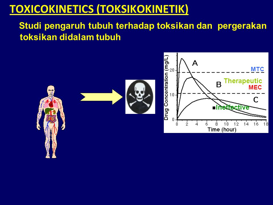 TOXICOKINETICS (TOKSIKOKINETIK)